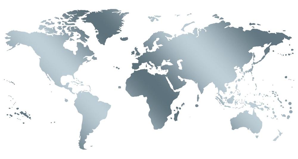 silver world map.jpeg